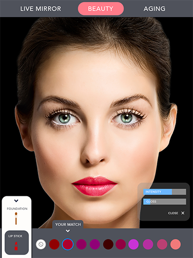 BeautyWidget_Overview_Body_graphic.png